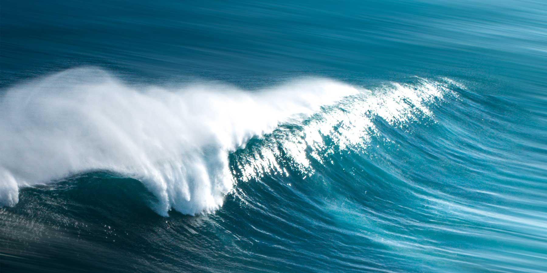 Les Laboratoires de Biarritz engagés depuis 10 ans pour les océans